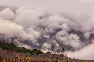 Photograph - Misty Mountains by Wallaroo Images