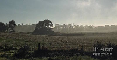 Photograph - Misty Pasture by Amanda Holmes Tzafrir