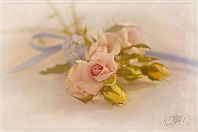 Cs5 Photograph - Misty Pink  by Sandra Rossouw