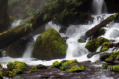 Photograph - Misty Rainforest Falls by Deanna Proffitt