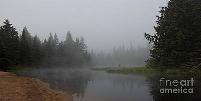 Photograph - Misty River In Algonquin by Barbara McMahon