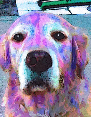 Dog Pop Art Painting - Misty by Robin Mead