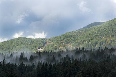 Photograph - Misty Treetops by Ross G Strachan