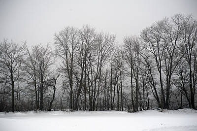 Oda Photograph - Misty Winter Day by Elaine Mikkelstrup