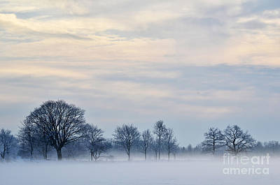 Misty Winter Day Art Print by Kennerth and Birgitta Kullman