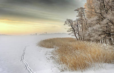 Haze Photograph - Misty Winter Morning by Keijo Savolainen