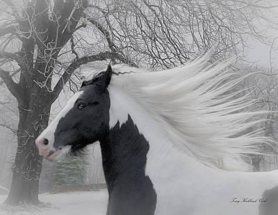 Gypsy Vanner Digital Art - Misty Winter by Terry Kirkland Cook