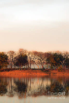 Photograph - Misty Winter's Morning by Angela DeFrias