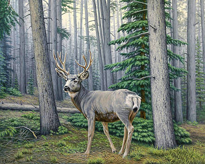 Buck Painting - Misty Woods-buck by Paul Krapf