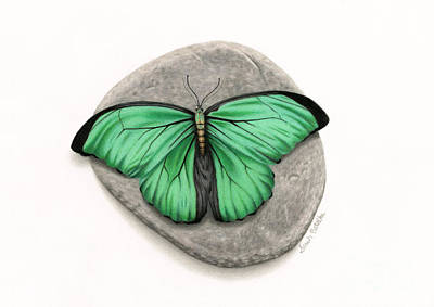 On-white Painting - Mito Awareness Butterfly- A Symbol Of Hope by Sarah Batalka