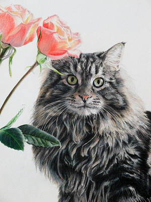 Drawing - Mitze And Roses by Vicky Path