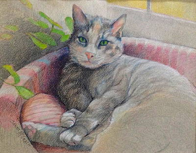 Drawing - Mitzi by Janet McGrath