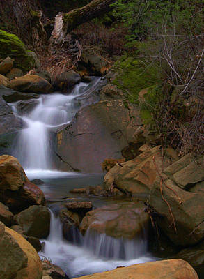 Mix Canyon Creek Print by Bill Gallagher