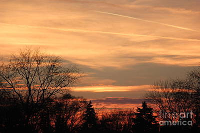 Photograph - Mixed Sunset Sky In The Park by Bill Woodstock