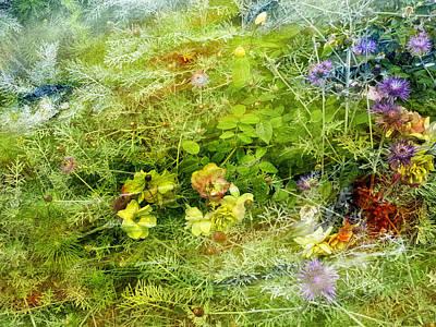 Grimm Fairy Tales - Painted flower rainbow by Joel Zimmerman
