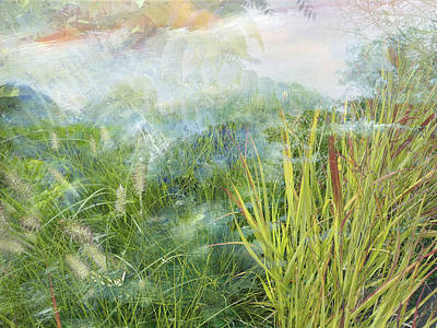 Giuseppe Cristiano - Painted grass with fog by Joel Zimmerman