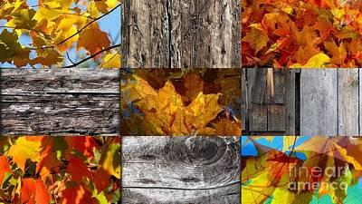 Photograph - Mixture Of Autumn by France Laliberte