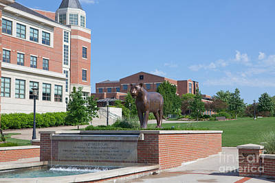 Photograph - Mizzou Tiger Fountain by Kay Pickens
