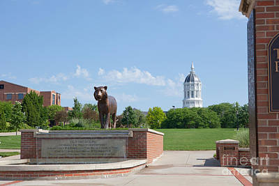 Photograph - Mizzou Tiger Plaza by Kay Pickens