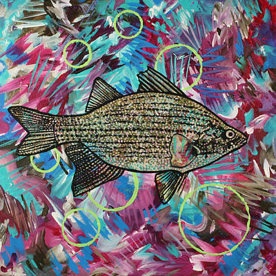 Painting - Mm That's Good White Bass by Julianne Hunter
