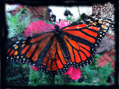 Image Transfer Mixed Media - Mnarch Butterfly by Monte Landis