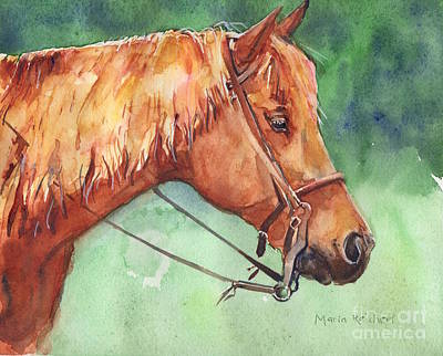 Sorrel Horse Painting - Horse Watercolor Named Mo by Maria's Watercolor