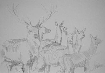 Drawing - Mob Of Deer by Mike Jory