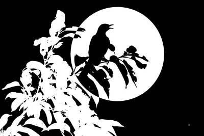 Digital Art - Mockingbird Moon by Betty Northcutt