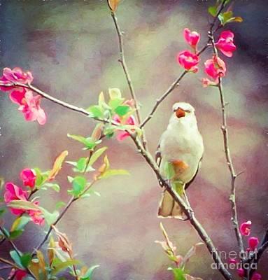 Mockingbird Photograph - Mockingbird Sings For Spring by Kerri Farley