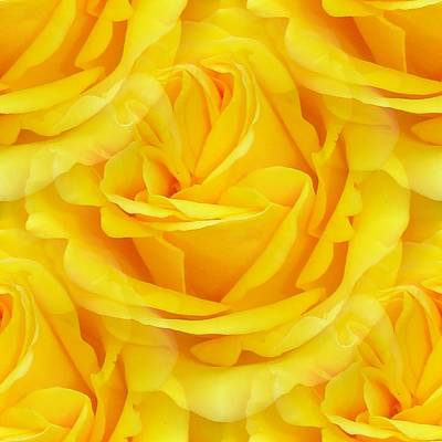 Photograph - Modern Abstract Seamless Yellow Rose Petals by Tracey Harrington-Simpson