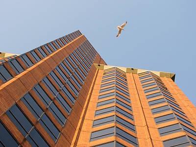 Photograph - Modern Architecture Angle 5 by Anita Burgermeister