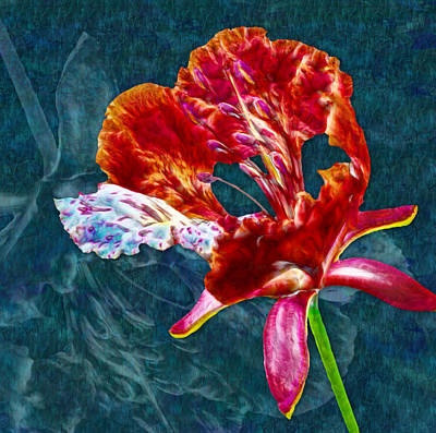 Irises Digital Art - Modern Floral - 01a by Variance Collections