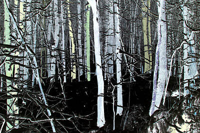 Photograph - Modern Forest by Anne Barkley