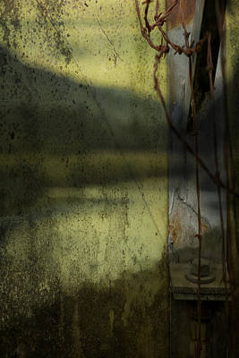 Photograph - Modern Landscape by Belinda Greb