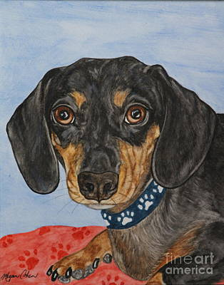Pet Painting - Moe The Dachshund by Megan Cohen