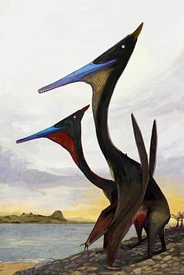 Moganopterus Pterosaurs Art Print by Nemo Ramjet