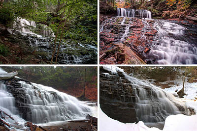 Photograph - Mohawk Falls In Every Season by Gene Walls