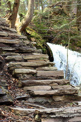Mohawk Falls Steps Art Print by Patti Whitten