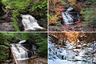Photograph - Mohican Falls In Every Season by Gene Walls