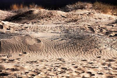 Photograph - Mojave Desert by John Rizzuto