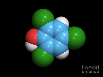Molecule Of A Component Of Tcp Art Print by Dr. Tim Evans