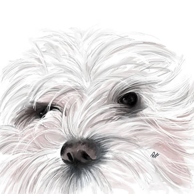 Animal Lover Digital Art - Mollie by Maria Schaefers