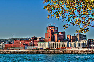 Photograph - Molson Brewery by Bianca Nadeau
