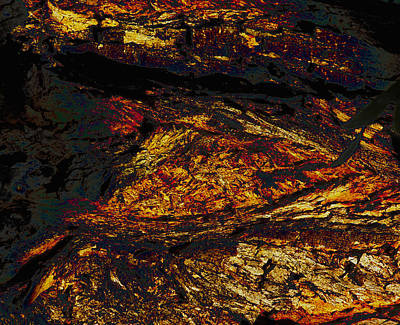 Digital Art - Molten Bark Lava by Stephanie Grant
