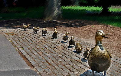 Photograph - Mom And Ducklings Walking by Caroline Stella