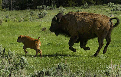Mom Chasing Her Red Dog   #4085 Original by J L Woody Wooden