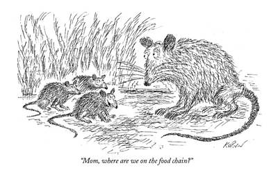 Food Chain Drawing - Mom, Where Are We On The Food Chain? by Edward Koren