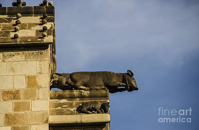 Photograph - Momma Rat And Baby Rats Gargoyle by Deborah Smolinske