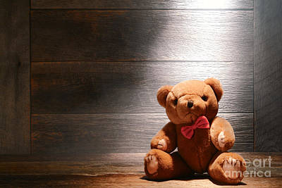 Stuffed Animal Toys Photograph - Mon Petit Ours by Olivier Le Queinec