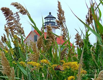 Photograph - Monarch At East Point Light  by Nancy Patterson